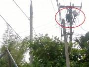 Tin tức trong ngày - Hi hữu: Cúp điện nhưng 1 công nhân vẫn bị điện giật chết