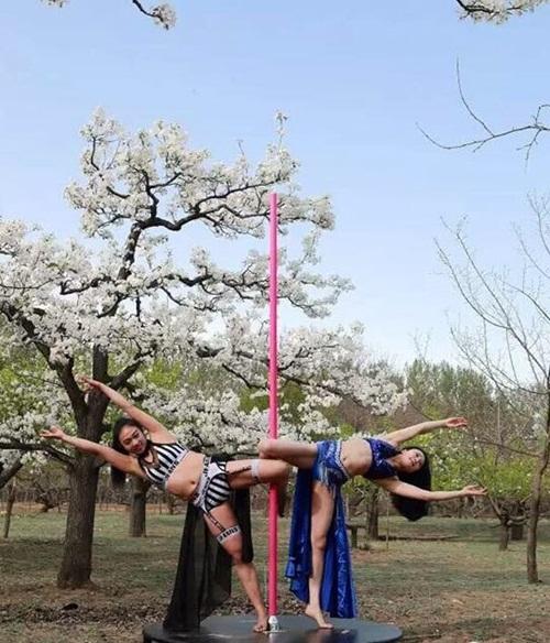 Thiếu nữ  ăn mặc hở hang múa cột giữa rừng hoa lê - 5