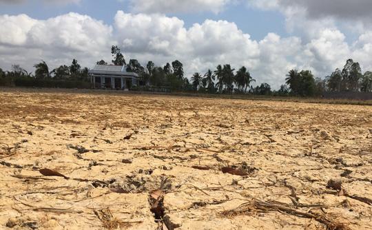 Báo nước ngoài viết về hạn hán ở đồng bằng sông Cửu Long - 3