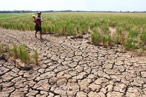 Báo nước ngoài viết về hạn hán ở đồng bằng sông Cửu Long - 2