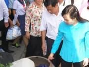 Tin tức trong ngày - TPHCM: Sẽ công bố hết dịch do virus Zika ở quận 2