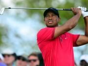 Thể thao - Tin thể thao HOT 20/4: Tiger Woods khổ luyện chờ tái xuất