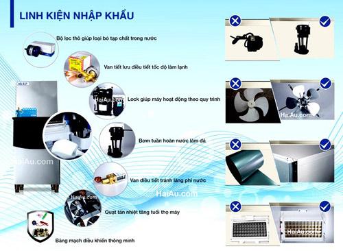 Hải Âu Việt Nam và khát vọng chiếm lĩnh thị trường đá viên sạch - 2