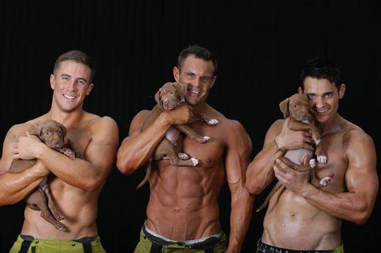 Úc: Lính cứu hỏa cơ bắp lực lưỡng chụp ảnh cùng cún cưng - 1