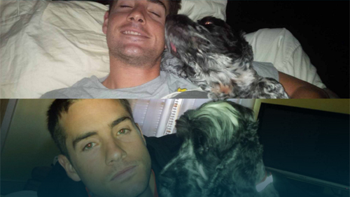 Thú cưng của Djokovic, Murray: Nói không với thú dữ - 7