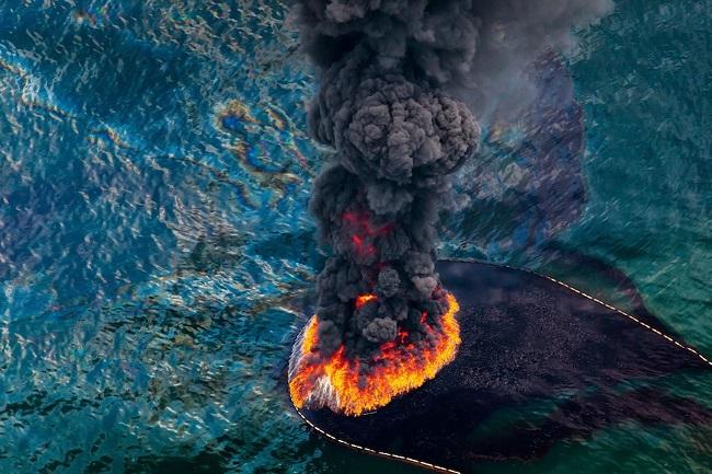 Dầu tràn lênh láng trên biển giết chết thủy sản