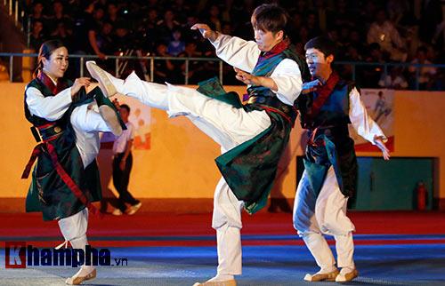 Xem múa côn, ra đòn đẹp mắt ở Liên hoan võ thuật TP HCM - 6