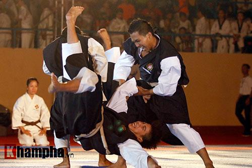 Xem múa côn, ra đòn đẹp mắt ở Liên hoan võ thuật TP HCM - 8