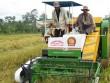 Nhiều sáng chế của nông dân bị bỏ xó vì cơ chế