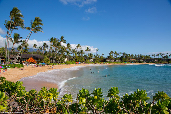 Theo đánh giá của tạp chí TripAdvisor, đảo Maui thuộc quần đảo Hawaii là hòn đảo đẹp nhất năm 2016. Du khách trên khắp thế giới bị hấp dẫn bởi bãi cát vàng và nước trong xanh tại thiên đường này.