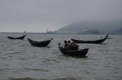 Cá chết hàng loạt ở Hà Tĩnh - Ngư dân Vũng Áng gác mái chèo - 3