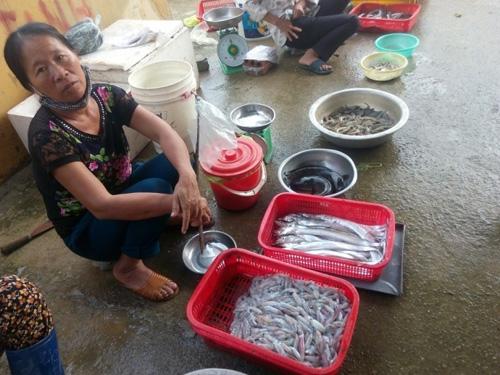 Bà con ngư dân vùng biển Vũng Áng Hà Tĩnh gác mái chèo - 5