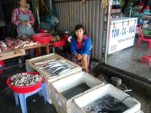 Nguyên nhân cá chết hàng loạt ở Miền Trung - 8