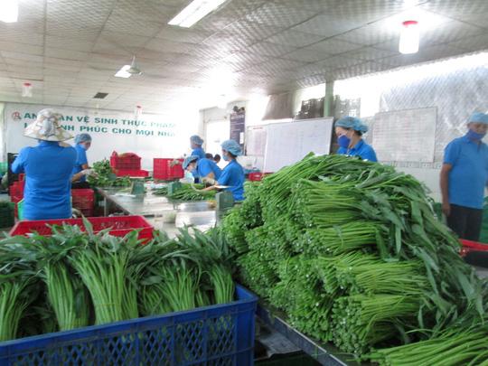 TP HCM sẽ quản lý thực phẩm từ gốc đến ngọn - 2