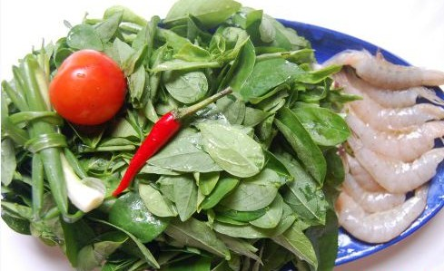3 tác dụng phụ đáng sợ của rau ngót cần phải biết trước khi ăn - 1