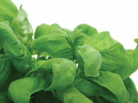 Thực phẩm xanh giúp chị em đốt cháy mỡ bụng hiệu quả - 6
