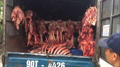 HN: Bắt giữ nhiều xe ôtô chở thực phẩm bốc mùi hôi thối - 1