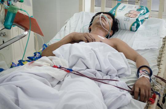 2 người chết vì ăn bọ rầy, người thứ 3 nhập viện theo dõi - 1