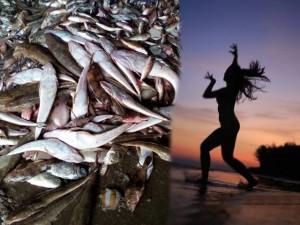 Bạn trẻ - Cuộc sống - Cặp nam nữ nude thể hiện nỗi đau cá chết miền Trung