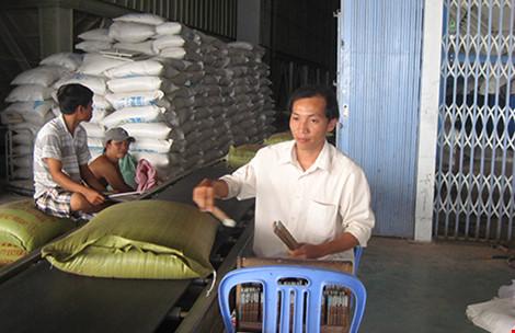 Muốn xuất khẩu gạo phải lập công ty tại… Singapore - 1