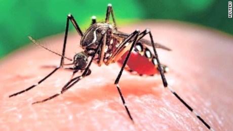 Việt Nam công bố hết dịch Zika - 1
