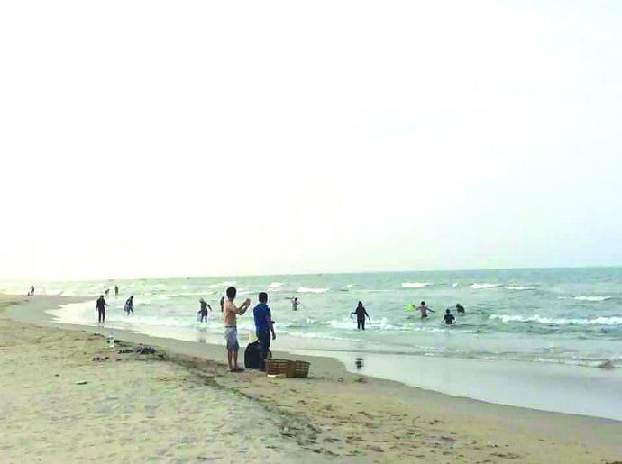 Dân Quảng Bình đổ xô vớt cá biển bán cho thương lái - 1