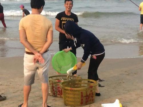 Dân Quảng Bình đổ xô vớt cá biển bán cho thương lái - 2