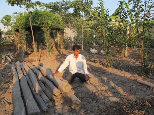 UBND huyện Bình Chánh: Phạt người xây chòi vịt là đúng - 2