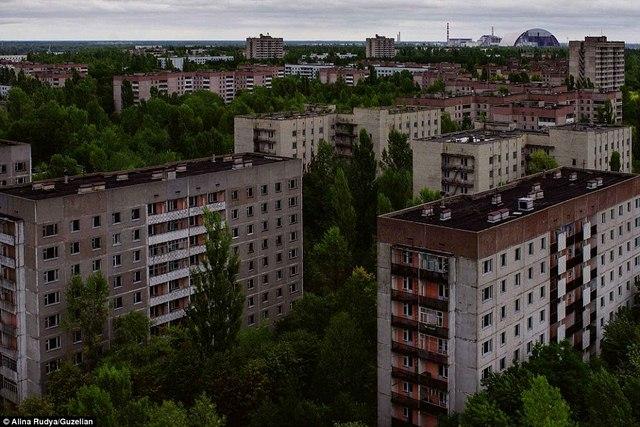 Ảnh: Dân chúng trở lại khu thảm họa Chernobyl sau 30 năm - 6