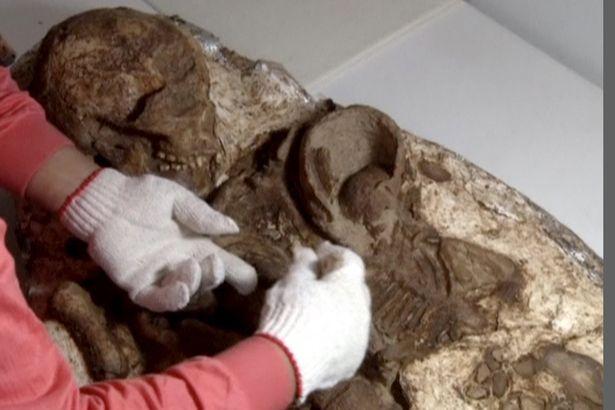 Phát hiện hóa thạch mẹ ôm con 4.800 năm ở Đài Loan - 2