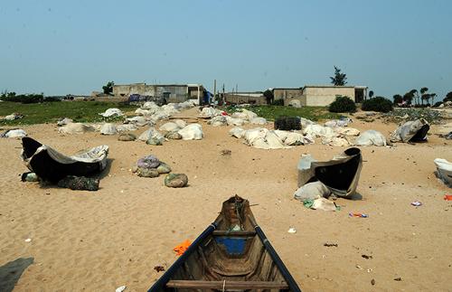 Cá chết hàng loạt - Chùm ảnh thuyền lưới hóa mồ trắng ở Hà Tĩnh - 1