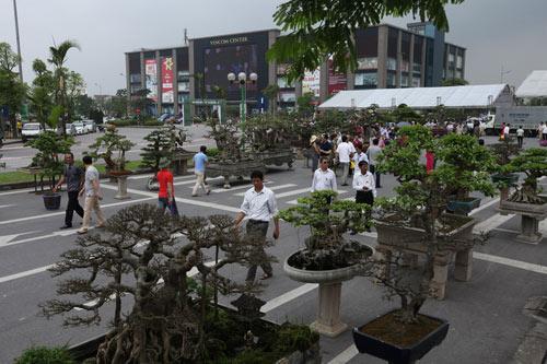 Lễ hội sinh vật cảnh  lớn nhất Việt Nam tại Vinhomes Riverside - 3