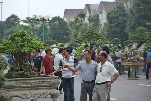 Lễ hội sinh vật cảnh  lớn nhất Việt Nam tại Vinhomes Riverside - 5