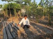 Tin tức trong ngày - UBND huyện Bình Chánh: Phạt người xây chòi vịt là đúng