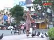 Cụ bà nghèo hơn 30 năm mua thóc đãi chim trời