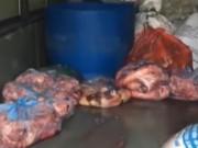 Video An ninh - HN: Bắt giữ 3 vụ thực phẩm bẩn chỉ trong 6 tiếng