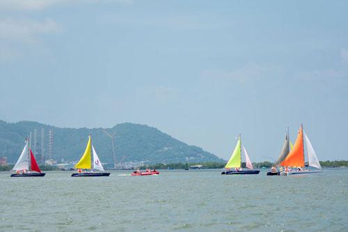 Chờ đợi Giải đua thuyền buồm lần đầu tiên tại Phú Quốc - 4