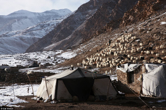 Để tìm hiểu về cuộc sống của bộ tộc Chang Tang-Pa, nhiếp ảnh gia Cat Vinton đã ở cùng một gia đình thuộc cộng đồng này suốt 3 tháng. Cô ngủ cùng họ trong túp lều làm bằng da bò Tây Tạng.