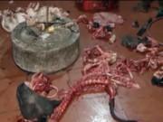 Video An ninh - Mua lợn chết về mổ thịt cấp đông, nấu mỡ