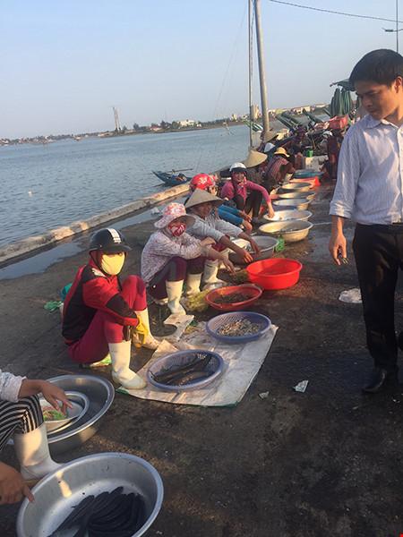 Quảng Bình: Bao tiêu cá đánh bắt xa bờ, nước biển đạt chuẩn an toàn - 1
