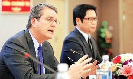 Tổng giám đốc WTO: Con ngỗng ngồi yên sẽ bị bắt - 1
