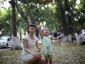 Tin tức trong ngày - Đường Hà Nội trải thảm vàng mùa lá bay