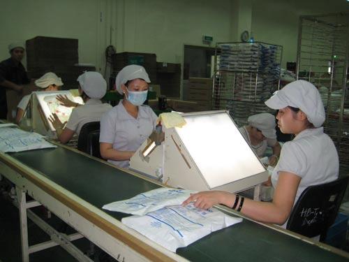 Các KCX-KCN TP HCM cần hơn 25.000 lao động - 1