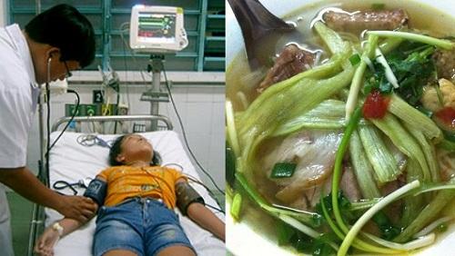 Ăn bún dọc mùng, cô gái 20 tuổi chết không kịp trăng trối - 1