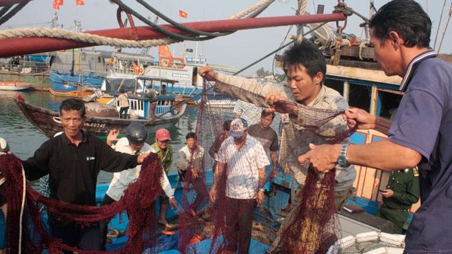 Tàu cá bị đâm ở Hoàng Sa, 34 ngư dân nhảy xuống biển - 1