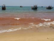Video An ninh - Xuất hiện vệt nước đỏ 1,5 km sát bờ biển Quảng Bình