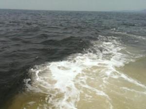 Tin tức trong ngày - Biển Hà Tĩnh có màu khác thường: Không phải lần đầu