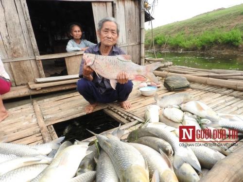 Thanh Hóa: Sẽ khởi tố hình sự vụ cá chết trắng sông - 3
