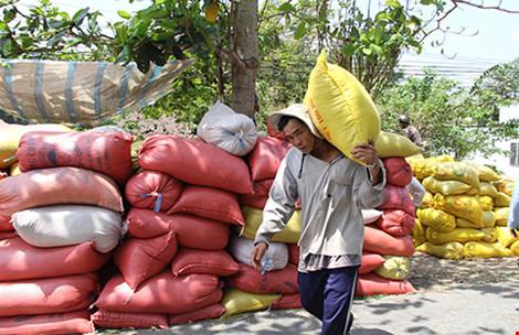 """Thái Lan xả kho gạo khổng lồ, gạo Việt """"nín thở"""" - 1"""
