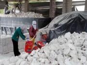 Thị trường - Tiêu dùng - Thêm hai mặt hàng Việt bị kiện bán phá giá